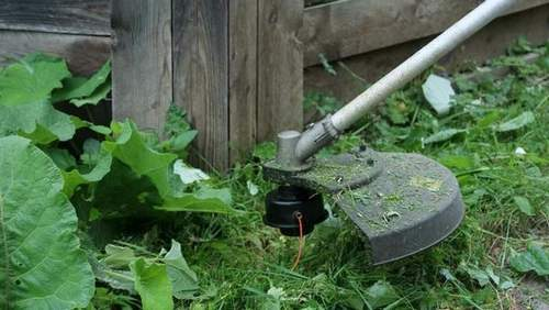 Какой Мощности Нужен Триммер Для Садового Участка