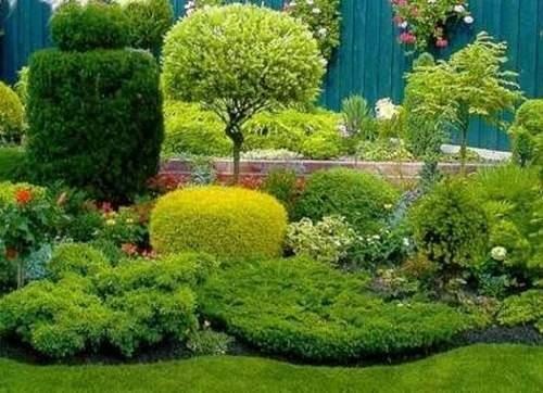 Когда Нужно Обрезать Деревья В Саду