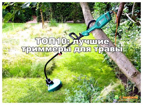 Электрокоса Для Травы Какая Лучше
